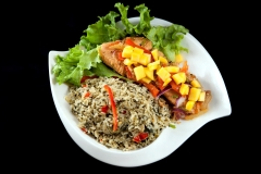 PTC (Fish and Spinach Rice 1)
